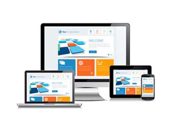 Web based Application Development